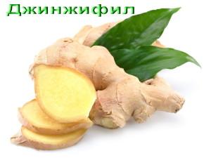 Джинджифил-Ginger
