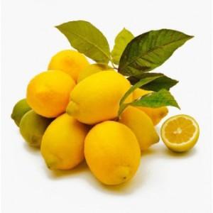 bio-limoni-koshnitsa